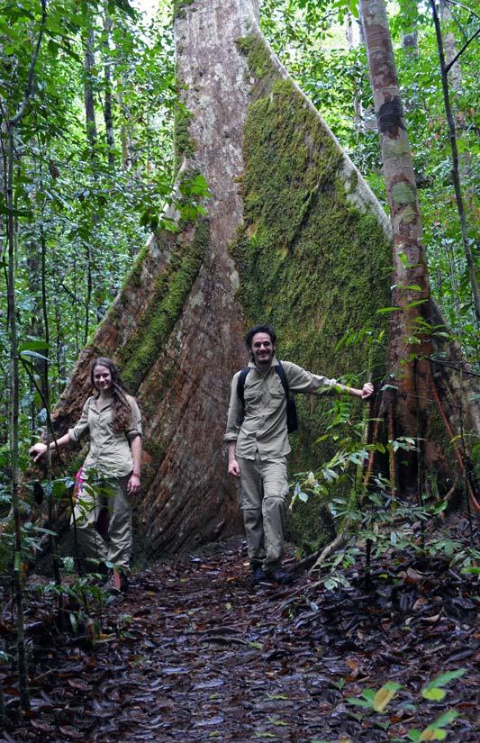 Meine Schwester Laura und ich vor einem Urwald-Riesen