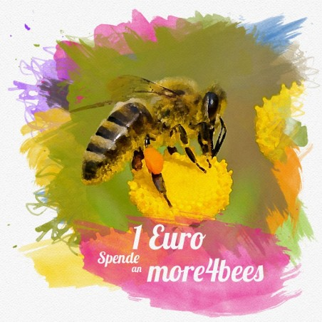 Sweet Lilac - Perlen
